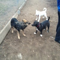 Photo taken at Veterans Grove Dog Run by Mariana B. on 3/2/2012