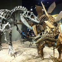 Photo taken at Denver Museum of Nature and Science by Jason S. on 2/20/2012