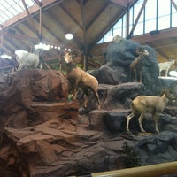Photo taken at Cabela's by Julian N. on 8/21/2012