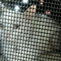 Photo taken at Pet Express by Juliana M. on 4/27/2012