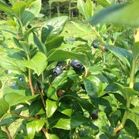 Photo taken at Applecrest Farm Orchards by Kimmy B. on 8/17/2012