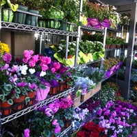 Photo taken at SF Flower Mart by Donnie B. on 6/20/2012