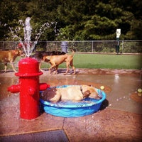 Newton Dog Park Alpharetta
