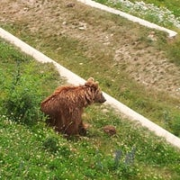 Das Foto wurde bei Bärenpark von Yuri L. am 6/24/2012 aufgenommen