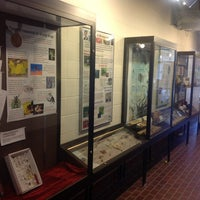 Photo taken at Insect Collection by Ukemeabasi E. on 6/14/2012