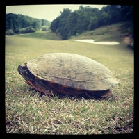 Photo taken at Eagle Bluff Golf Course by Steven G. on 4/27/2012