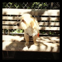 Photo taken at Chelsea Waterside Park Dog Run by Tina B. on 5/12/2012