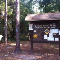 Photo taken at Citrus Hiking Trail-Mutual Mine by Florida T. on 6/30/2012
