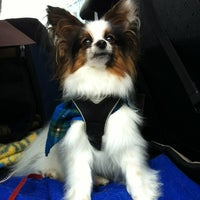 Photo taken at Pooch Parlour by PetRide Halifax P. on 7/5/2012