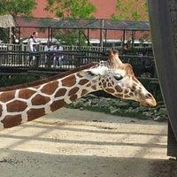 Photo taken at Giraffen by Marcel C. on 9/8/2012