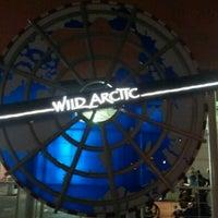 7/13/2012 tarihinde Attila C.ziyaretçi tarafından Wild Arctic'de çekilen fotoğraf