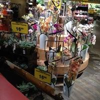 Photo taken at Safeway by Sintia L. on 6/9/2012