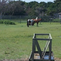 Photo taken at Ocracoke Pony Pasture by Art M. on 7/23/2012