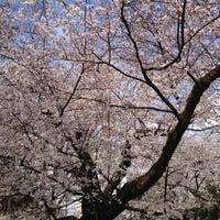 Photo taken at Tetsugakudo Park by Yasu on 4/7/2012