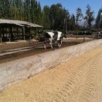 Photo taken at Granja El Rancho by Carolina À. on 3/26/2012