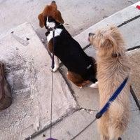 Photo taken at US 1 & King Street by Jane B. on 6/14/2012
