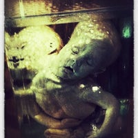 Photo taken at Mütter Museum by Victoria R. on 9/3/2012