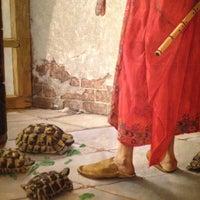 Foto scattata a Pera Müzesi da Seb il 7/15/2012