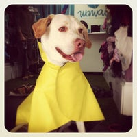 Photo taken at Wawaw, ropa para perros by Wawaw R. on 5/19/2012