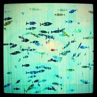 """Foto tomada en Sala LAi """"Laboratorio de Arte Íntimo"""" por Jairo A. el 6/17/2012"""