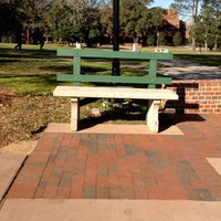 the fsu kissing bench general college university in tallahassee