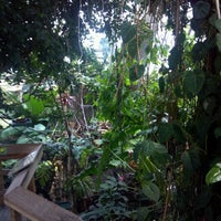 Photo taken at The Rainforest by Cassie C. on 7/24/2012