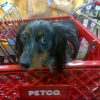 Photo taken at Petco by Danielle S. on 7/27/2012