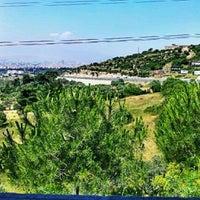 6/2/2012 tarihinde Barış S.ziyaretçi tarafından Vebaş'de çekilen fotoğraf