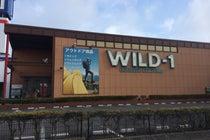 WILD-1 ふじみ野店