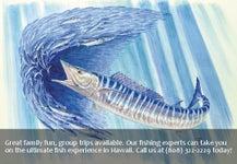 Hapa Laka Hawaiian Charters