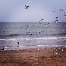 Пляж Лузановка , фото 12