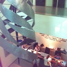 Еврейский Культурный Центр «Beit Grand», фото 8