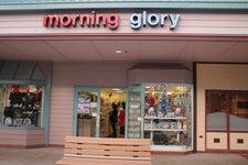 Morning Glory of Mililani