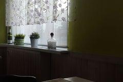 Пралеска - Кафе