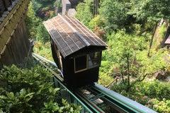 新祖谷温泉 ホテルかずら橋の内観