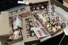 Суши Весла Тэйкэвэй - Доставка еды