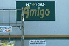 アミーゴ 五日市店