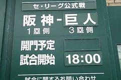 阪神甲子園球場 アイビーシート
