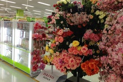 ダイソー みやぎ生協塩釜杉の入店