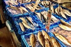 角上魚類 赤羽店
