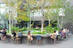 Starbucks Coffee 東急プラザ 表参道原宿店