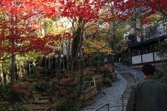 山のホテル 夢想園