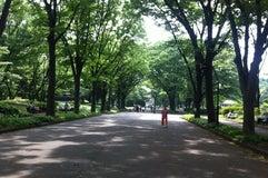駒沢オリンピック公園ジョギングコース