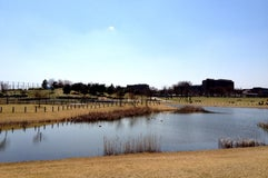 武蔵野の森公園
