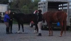 Reddmeade Equestrian Center