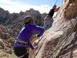 The Climbing Life Guides