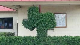 Texas Drive Inn