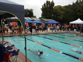 Treeview Swimming Club