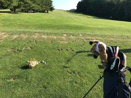 Pickering Valley Golf Club