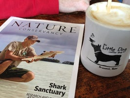 Little Dog Coffee Shop